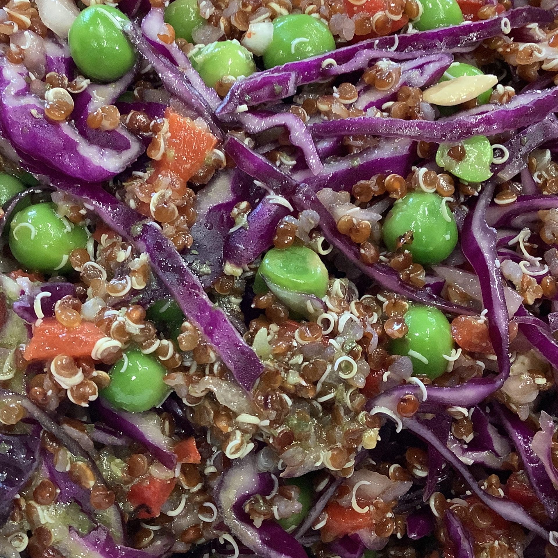 Red quinoa ,red cabbage ,peas and capsicum salad