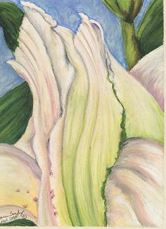 Curvature Cream Pastel Painting