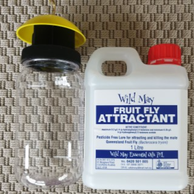 Trap & 1L of Wild May
