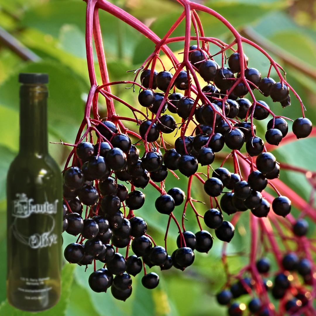 Elderberry Dark Balsamic Vinegar