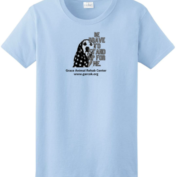 Light Blue T-shirt --  stand up for me