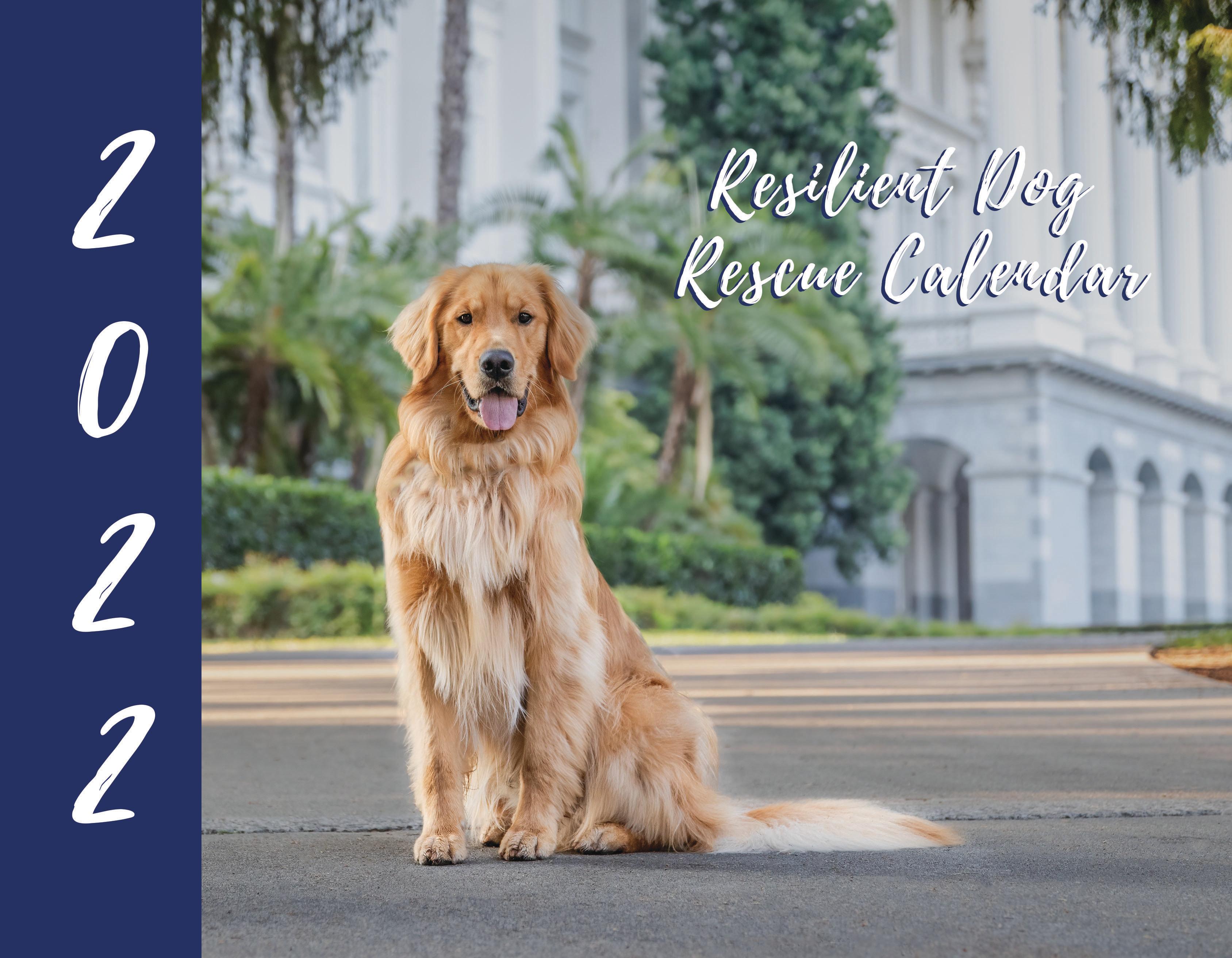 2022 Resilient Dog Rescue Calendar