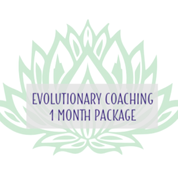 Energy Coaching - 1 month retainer